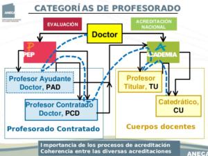 Sobre los sistemas de contratación y acreditación en las universidades españolas