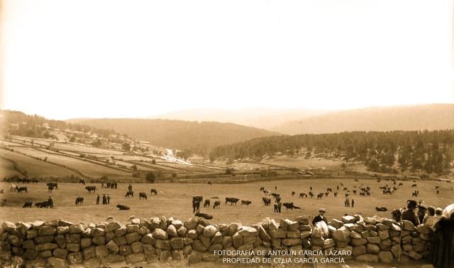 Fuente: https://historiadecovaleda.wordpress.com/2014/09/19/los-aprovechamientos-comunales-en-las-comunidades-de-villa-y-tierra-castellanas-ii/