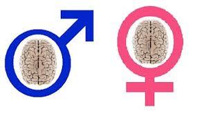 Las diferencias entre mujeres y hombres y la estadística