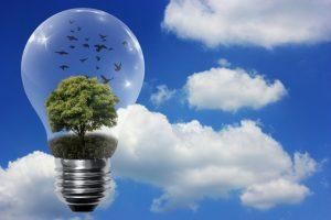Eficiencia energética y emisiones de CO2 en España