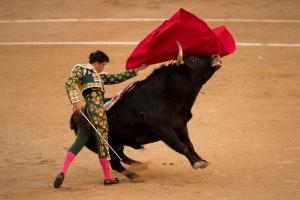 Economía liberal y corridas de toros