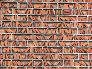 Ladrillos y libros: ¿cuánto daño nos ha hecho el boom de la construcción?