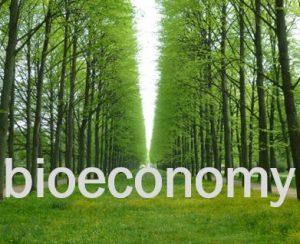 ¿Impuesto al carbono o subvenciones verdes?