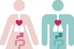 Sobre las diferencias en mortalidad según el género
